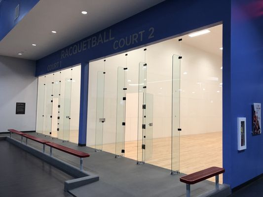 LED Racquetball Recessed Lighting